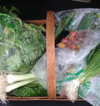 CSA week 18: soggy & chilly