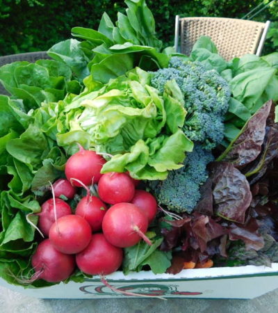 The CSA weekly box