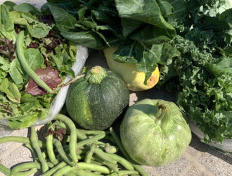 CSA week 10: summer veggies
