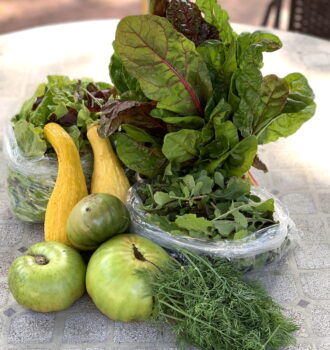 CSA week 19: chard, greens, and green tomatoes